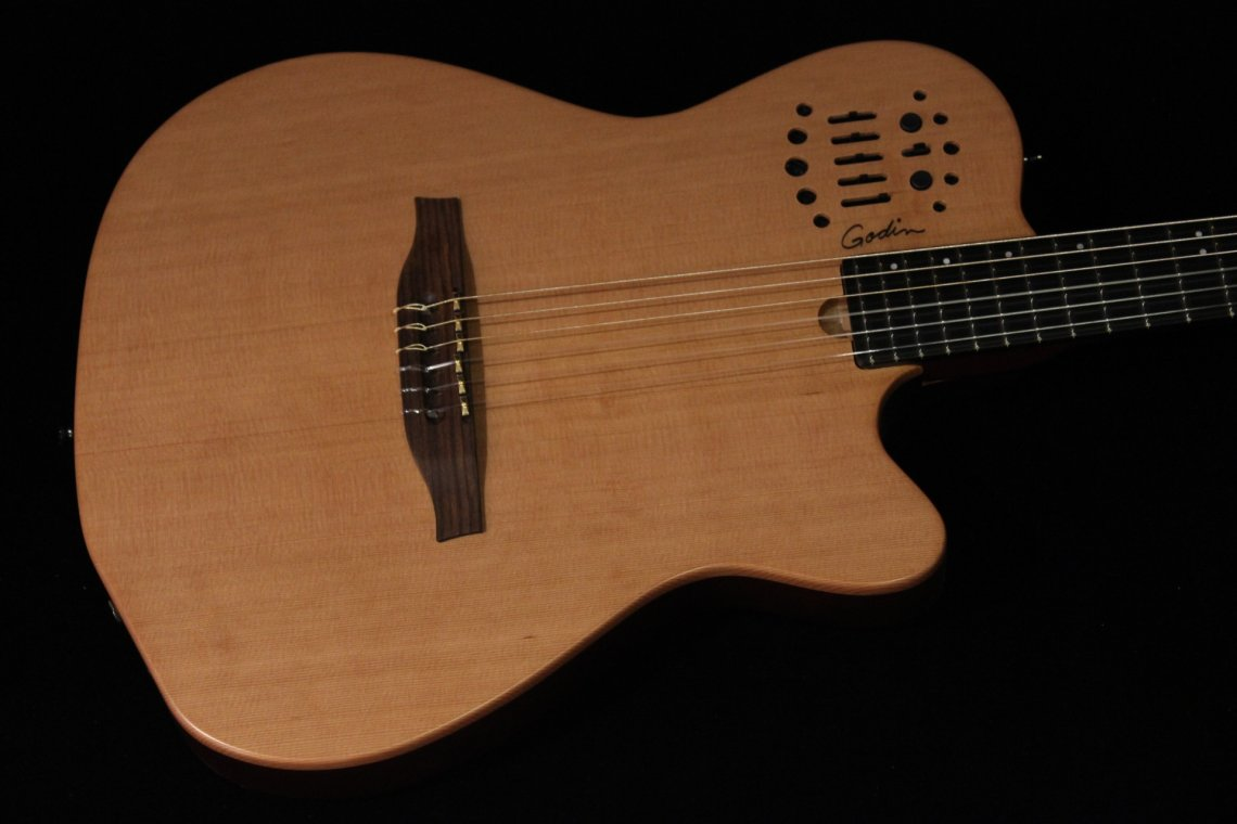 godin acs sa slim manual